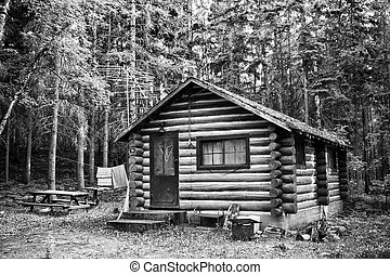 Rustic Old Log Cabin