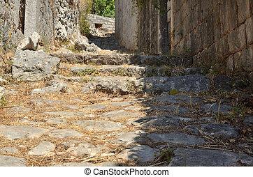 Rustic stone path