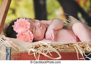 Rustic Wagon Newborn