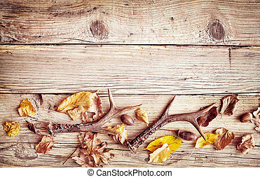 Rustic wood with fall border of leaves and antlers