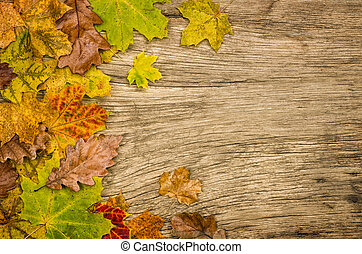 Rustic wooden background with colorful autumn leaves