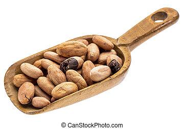 rustiek, primeur, cacao, bonen