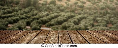rustik, trä tabell, med, bakgrund, oliv, träd