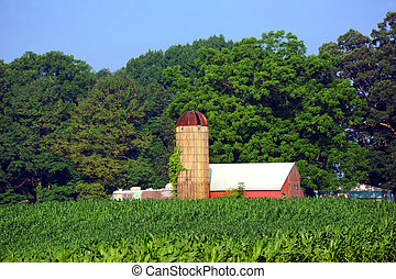 Rusting Roofed Silo and Red Barn