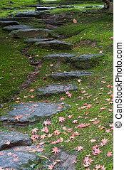 rustique, étapes, rocher