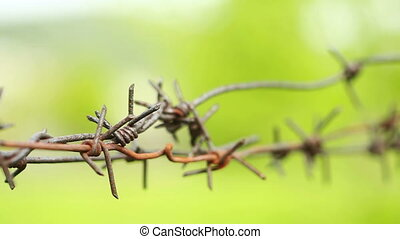 Rusty barbed wire.