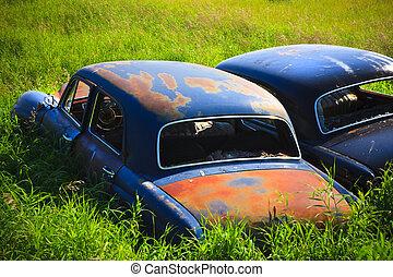 Rusty Car in the Tall Grass