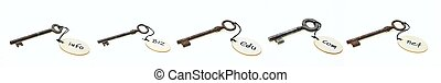 Rusty keys with wooden round tags with domain names, isolated on white background
