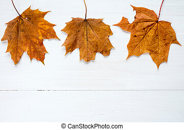 Rusty leaves over wooden background with copy space