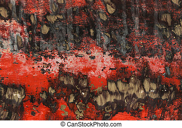 Rusty metal texture bottom vessel.  The red background.