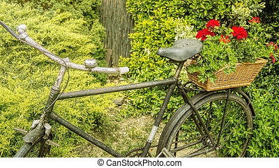 Rusty old bicycle with flowers
