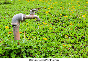 Rusty sprinkler faucet on  green grass in the garden