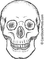 ruvido, vettore, -, disegno, cranio