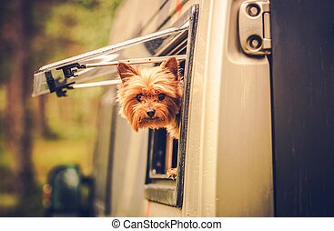 RV Travel with Dog. Motorhome Traveling with Pet. Middle Age...