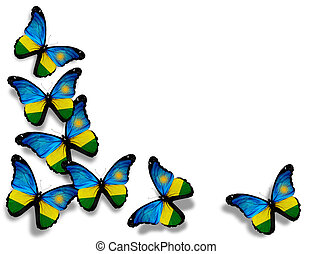 Rwanda flag butterflies, isolated on white background