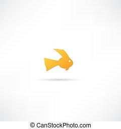 ryba ikona