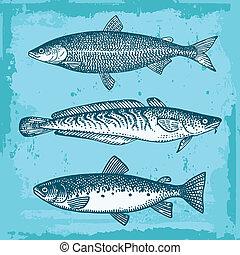 ryby, komplet