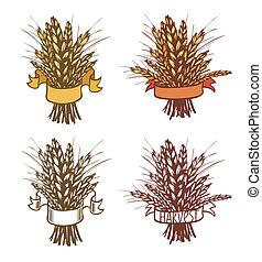 Rye, wheat - sheaf of wheat or rye on white. Eps 8.