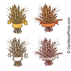 Rye, wheat - sheaf of wheat or rye on white. Eps 8.