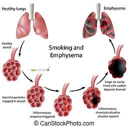 rygning, og, emfysem, eps8