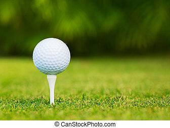 rykke sammen, udsigter, i, golf bold tee, på, golf kurs