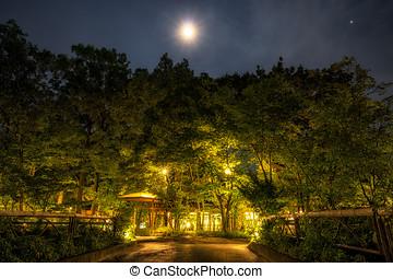 ryokan, bosque, por la noche