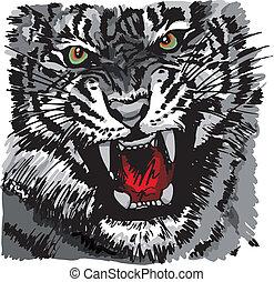 rys, wektor, ilustracja, tiger.