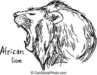 rys, ziewanie, -, odizolowany, ilustracja, ręka, kwestia, lew, wektor, czarne tło, afrykanin, pociągnięty, biały