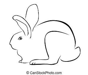 rysunek kalkowy, od, niejaki, królik