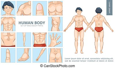 rysunek, strony, pojęcie, męskie ciało