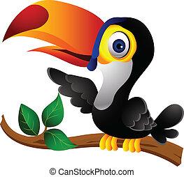 rysunek, tukan, przedstawiając, ptak