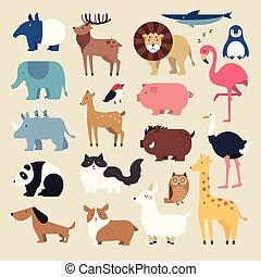rysunek, zwierzęta, komplet