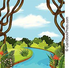 rzeka, las, krajobraz