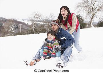 sáně, jízdní, sněžit, rodina