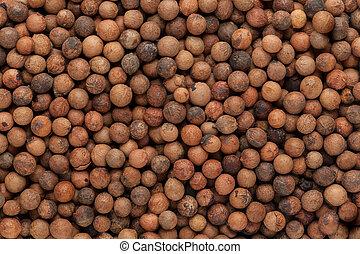 sándalo, seeds., indio, orgánico