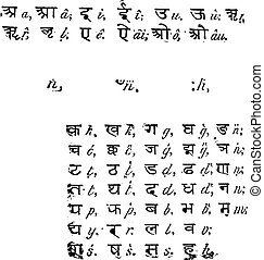 sánscrito, vendimia, alfabeto, engraving.