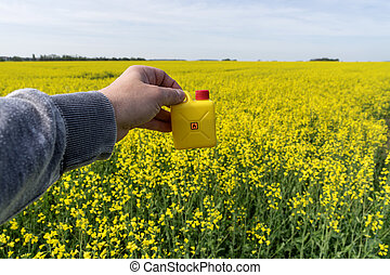 sárga, elrabol, olaj, dobozba csomagol, alatt, kéz