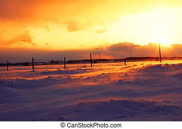sárga, napnyugta, felett, snowbank