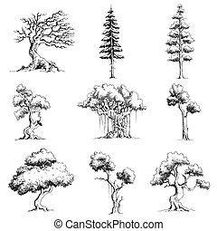 sätta, av, träd