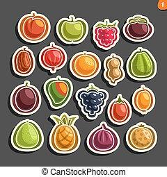 sätta, färgrik, ikonen, vektor, frukter, bär