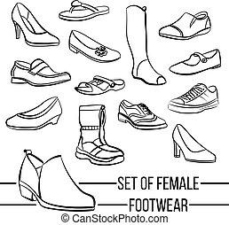 sätta, fodrar, s, vektor, skodon, oavgjord, kvinnor