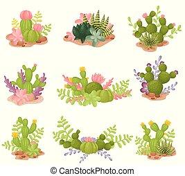 sätta, illustration, bakgrund., vektor, cacti., vit