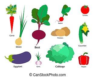 sätta, illustration., grönsaken, isolerat, bakgrund., vektor, vit