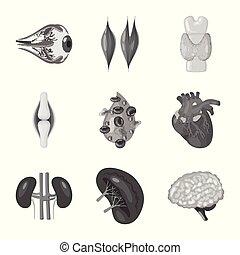sätta, illustration., medicinsk, vektor, hälsa, design, logo...