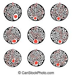 sätta, labyrint, illustration, solution., vektor, runda, labyrint