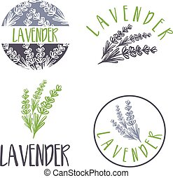 sätta, lavender., abstrakt, illustration, vektor, design, mall, logo, ikon