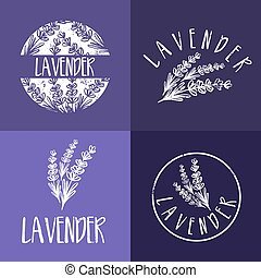 sätta, lavender., abstrakt, illustration, vektor, design, mall, logo, ikon