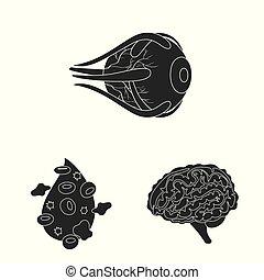 sätta, organ, stock., illustration, forska, vektor, ...