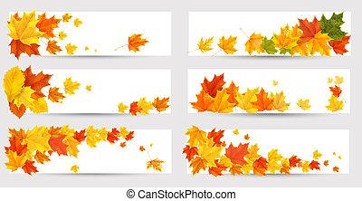 sätta, school., färgrik, baksida, leaves., höst, vektor, baner, illustration.