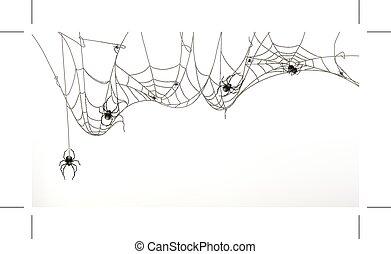 sätta, spindlar, nät, spindel